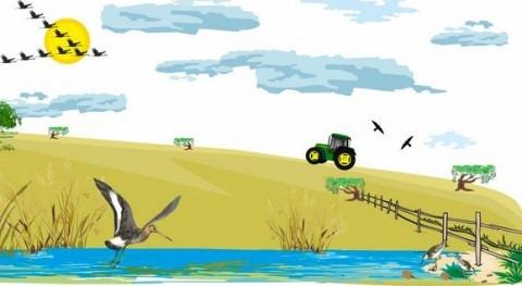 Extremadura cuenta 348 humedales, incluyendo dos Zonas Ramsar