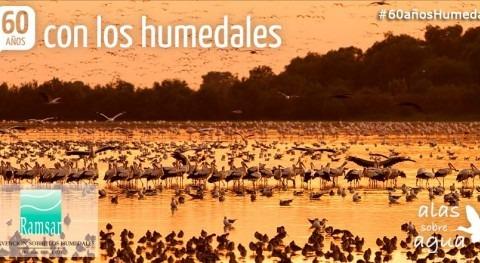 SEOBirdLife celebrará Día Mundial Humedales