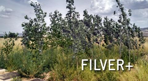 FILVER+, regeneración aguas mediante nuevo concepto filtro verde
