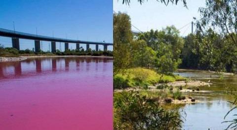 lago rosa Australia