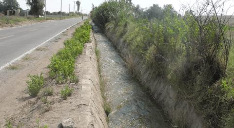 Perú: Realizan descolmatación canales y drenes aumentar oferta agua Tacna