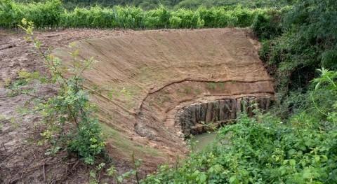Restauran tramo ribera erosionada margen derecho río Mayor, Elciego