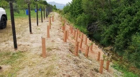 URA restaura ribera erosionada río Muera, Añana