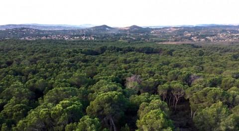 IIAMA participa proyecto reducir riesgo incendio Parc Natural Túria