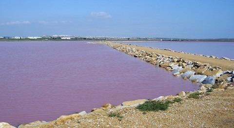 """entrada aguas diferente salinidad, principal presión antrópica """" Mata-Torrevieja"""""""