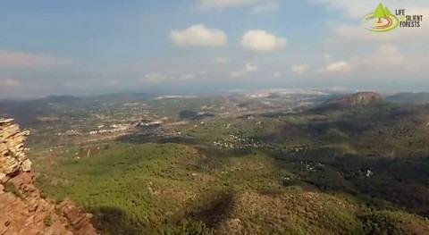 proyecto LIFE RESILIENT FORESTS se acerca al ecuador desarrollo resultados positivos