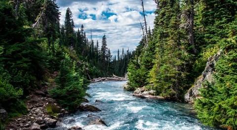 métodos post-procesamiento hidrológico generan predicciones más exactas y fiables