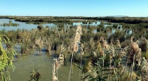estudio aborda interacciones agua subterránea acuífero Plana València