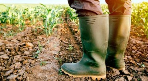 IICA y AECID fortalecerán adaptación escasez hídrica y sequía Corredor Seco