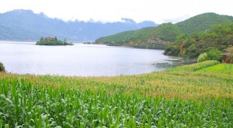 Agua y suelo, base seguridad alimentaria