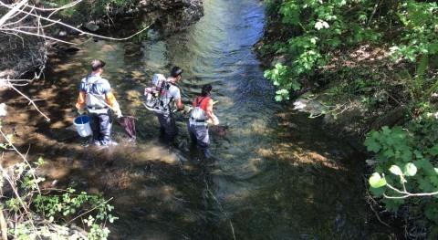 Seminario relación presiones antrópicas y estado ecológico ríos