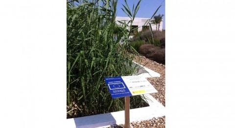 Aprobada nueva patente eliminación bacteriana nitrato aguas residuales