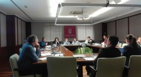 Comparecencia promover modelo gestión abastecimiento y saneamiento profesional Álava