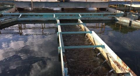 Organismos operadores agua potable: desafíos y oportunidades