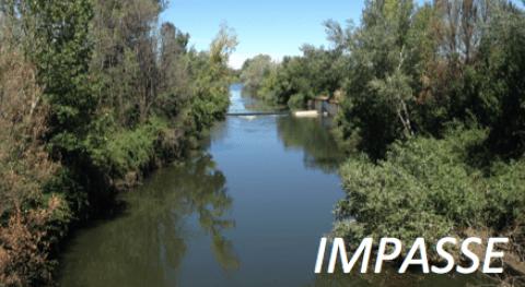 Impacto microplásticos agro-ecosistemas y ecosistemas fluviales