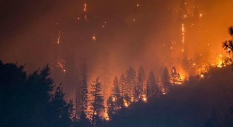 Expertos advierten que cambio climático sigue avanzando pesar pandemia COVID-19