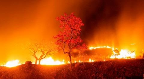 Pantanal Brasil se consume sequía y incendios