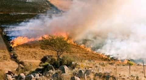37% territorio español está riesgo desertificación