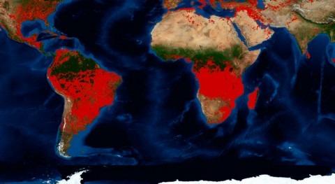 corazón África está llamas (pero verdadero problema es sequía)
