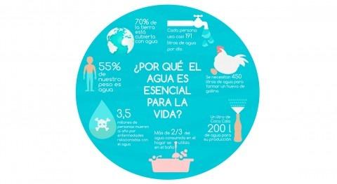 ¿ qué agua es esencial vida?
