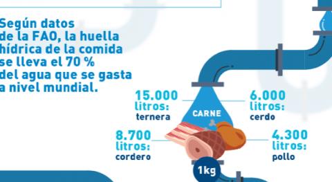 Fundación Aquae analiza huella hídrica alimentos que más consumimos