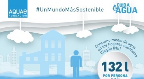 Cerca 70 % agua consumida hogares españoles se emplea cuarto baño