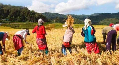 Agricultura, oportunidad desarrollo Américas
