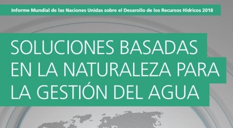 Informe Mundial Naciones Unidas Desarrollo Recursos Hídricos
