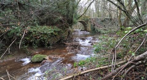 Reunión acordar actuaciones hacer cumplir caudales ecológicos río Inglares