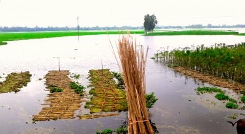 lluvias dejan cerca 400.000 desplazados causa inundaciones Bangladés