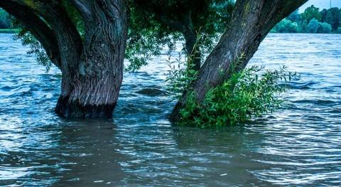 Bruselas expedienta España incumplir plazos normativa europea inundaciones