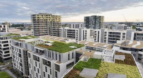 Imitar naturaleza evitar inundaciones ciudades