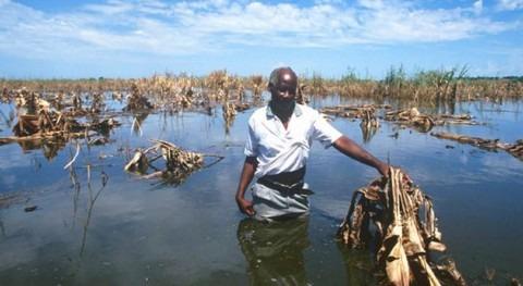 Inundaciones en Malawi (FAO).