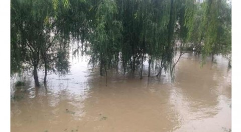 Fallecen al menos cinco personas y miles quedan atrapadas debido fuertes lluvias China