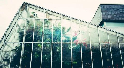 Desarrolladas nuevas estrategias control agua y fertilización invernaderos