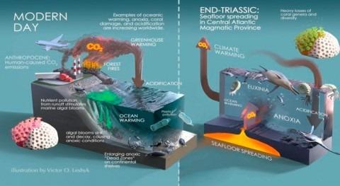 reacción cadena eventos ambientales mató vida Triásico