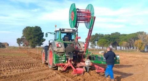 Centro Agronómico Melusa CHE suma proyectos investigación y hectáreas modernizadas