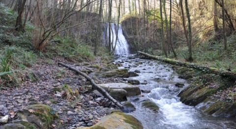 consulta pública Plan Hidrológico Cantábrico Oriental (Cuencas internas)