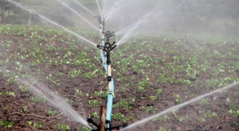 SUEZ participará proyecto irrigación y producción agrícola Valle Olmos Perú