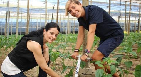 Métodos ahorro agua uso agrícola