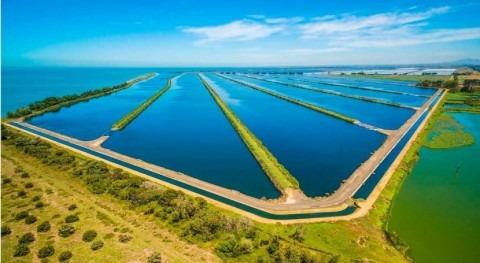 Asociación fortalecer innovación agua Australia y Nueva Zelanda