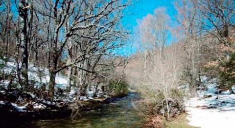 Ecologistas Acción propone medidas gestión reserva natural fluvial Jarama