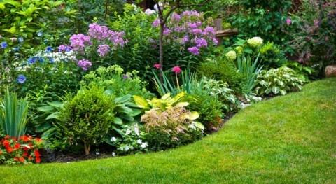 jardines legitimidad