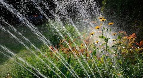 ¿Cómo canalizar riego zonas verdes urbanas periodos sequía?