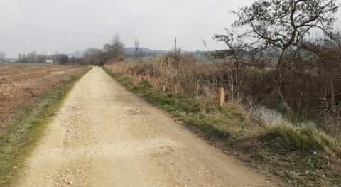 URA revegeta especies autóctonas tramo río Ihuda (Ayuda) paso Berantevilla