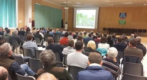 Aportar sedimentos campos arroz podria evitar desaparición Delta Ebro