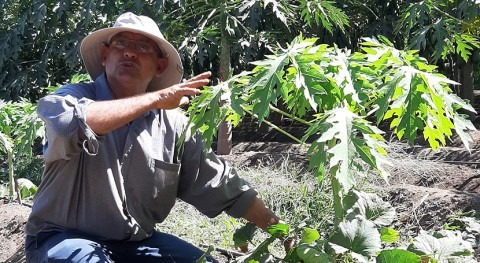 Corredor Seco Centroamericano: ¿cómo adaptarse al cambio climático?