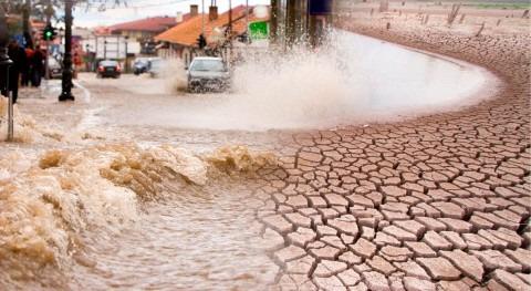 Conoce J-WAFS, Laboratorio Mundial Agua y Seguridad Alimentaria Abdul Latif Jameel