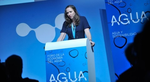 "Katheleen Dominique: ""Estamos creando puente sector agua y sector financiero"""