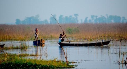 India designa dos humedales críticos biodiversidad